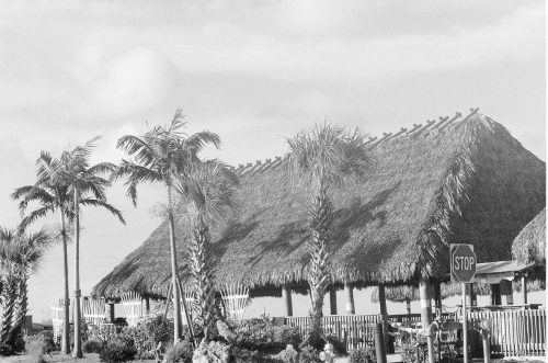 black and white of the tiki hut