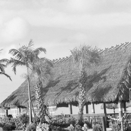Grey scale photo of tiki hut