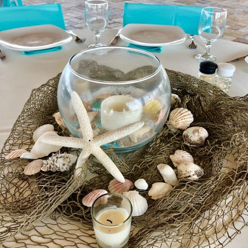 shells and starfish on table